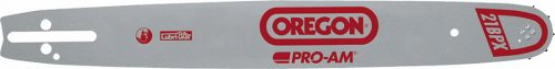 Oregon 163SFHD025 / 41cm 3/8'' 30 Diş Kılavuz